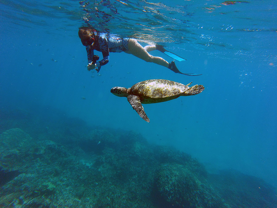 Swimmer and turtle underwater